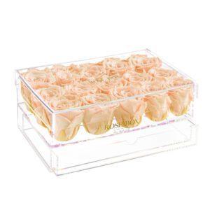 15 sorbet peach