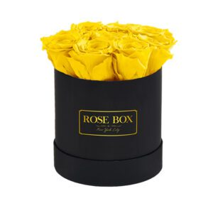 small-black-yellow