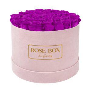 large round pink royal purple