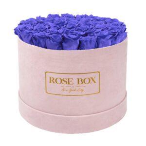 large round pink spring purple