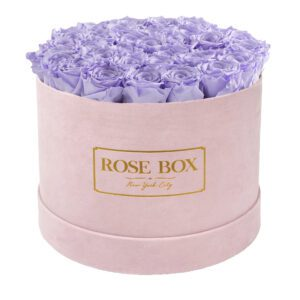 large round pink violet
