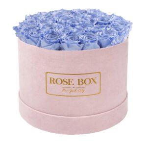 large round pink light blue