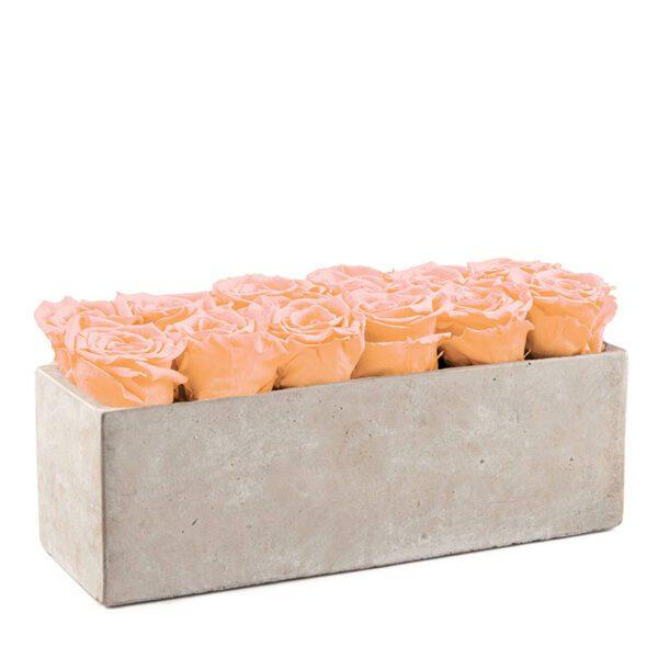 gray slate sorbet peach