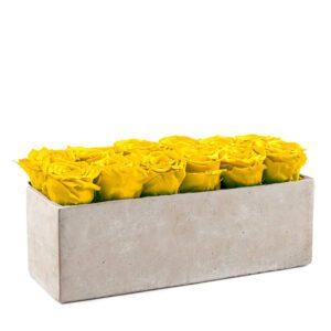 gray slate bright yellow