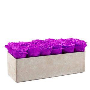 gray slate royal purple