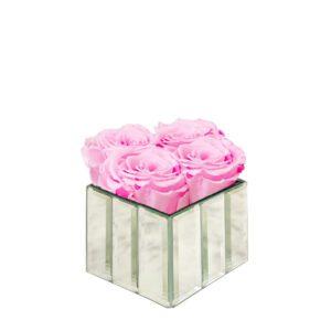 mini modern pink blush