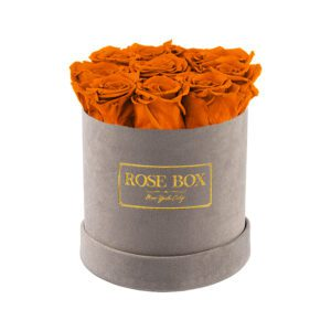 small gray orange roses