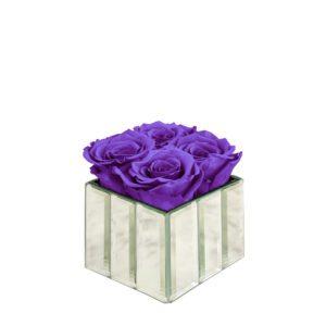 mini modern spring purple