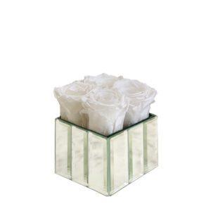 modern mini pure white